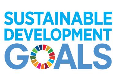 E_SDG_logo_No UN Emblem_square_rgb