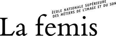 femis.fr_logo